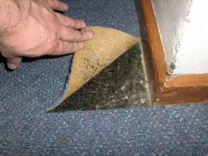 Asbestos added in trace quantities to thermoplastic floor tiles